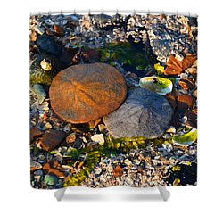 Low Tide Lovers Shower Curtain