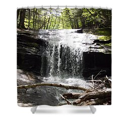 Lower Chapel Brook Falls Shower Curtain