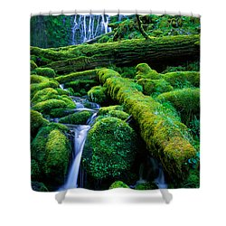 Lower Proxy Falls Shower Curtain by Inge Johnsson