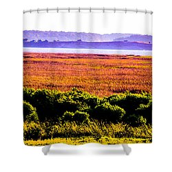 Lowland Light  Shower Curtain by Mary Ward