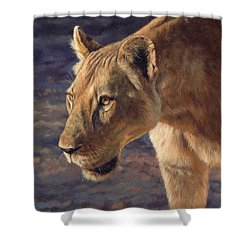 Luangwa Princess  Shower Curtain by David Stribbling
