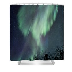 Lucid Dream Shower Curtain by Priska Wettstein