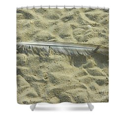 Shower Curtain featuring the photograph Lucky Feather by Emmy Marie Vickers