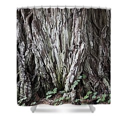 Lucky Tree Shower Curtain by Amanda Barcon