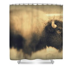 Lucky Yellowstone Buffalo Shower Curtain by Lynn Sprowl