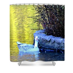 Shower Curtain featuring the photograph Lucy by Deena Stoddard