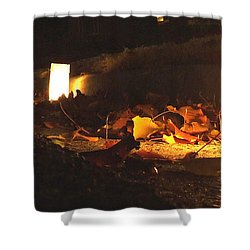Shower Curtain featuring the photograph Luminaries by Andrea Anderegg