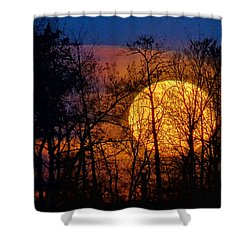 Luminescence Shower Curtain by Bill Pevlor