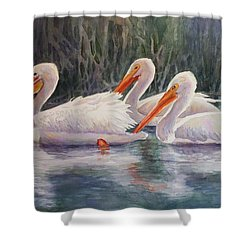 Luminous White Pelicans Shower Curtain by Roxanne Tobaison