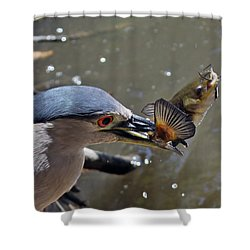 Lunch Is Served Shower Curtain by Shoal Hollingsworth