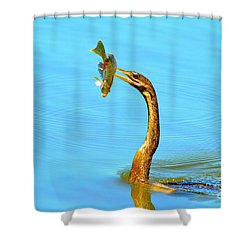 Lunch On The Spear Shower Curtain