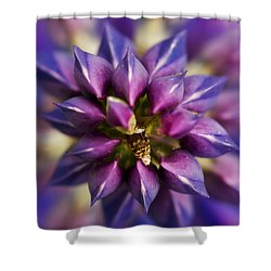 Lupine Kaleidoscope Shower Curtain by John Vose