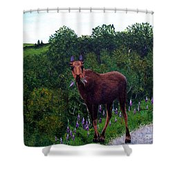 Shower Curtain featuring the painting Lupine Loving Moose by Barbara Griffin