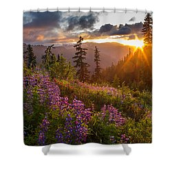 Lupine Meadows Sunstar Shower Curtain