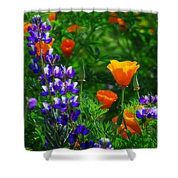 Lupines And Poppies Shower Curtain