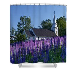 Lupines At St. Matthews In Sugar Hill Shower Curtain