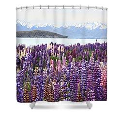 Shower Curtain featuring the photograph Lupins At Tekapo by Nareeta Martin
