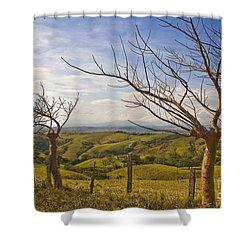 Lush Land Leafless Trees 2 Shower Curtain