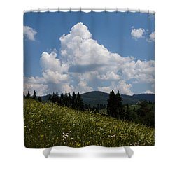 Lush Wildflower Meadow In The Mountains Shower Curtain by Georgia Mizuleva