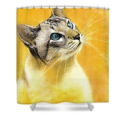 Shower Curtain featuring the drawing Lynx Point Siamese by VLee Watson