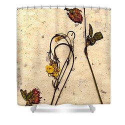 Mache4 Shower Curtain