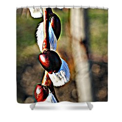 Macro Hdr Shower Curtain by Frozen in Time Fine Art Photography