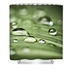 Macro Raindrops On Green Leaf Shower Curtain