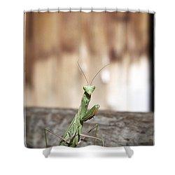 Madame Mantis Shower Curtain