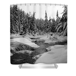 Madawaska River Shower Curtain