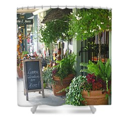 Madison Valley Street Scene 2 Shower Curtain