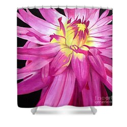 Magenta Beauty Shower Curtain
