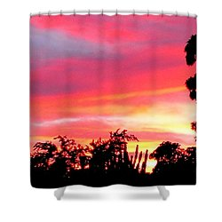 Shower Curtain featuring the photograph Magenta Sunset by DigiArt Diaries by Vicky B Fuller