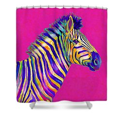 Magenta Zebra Shower Curtain by Jane Schnetlage