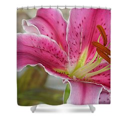 Magenta Tiger Lily Shower Curtain