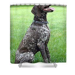 Shower Curtain featuring the photograph Maggie by Lisa Phillips