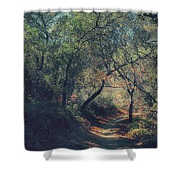 Magic Awaits Us Shower Curtain by Laurie Search