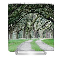 Magic Live Oaks Shower Curtain
