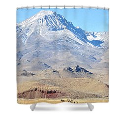 Magic Mountains Shower Curtain