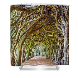 Magic Yew Shower Curtain