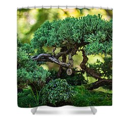 Shower Curtain featuring the photograph Magical Bonsai by Julie Andel