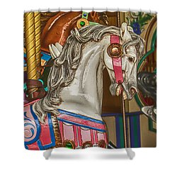 Magical Carrsoul Horse Shower Curtain by Garry Gay
