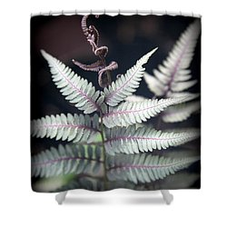 Magical Forest 2 Shower Curtain by Karen Wiles