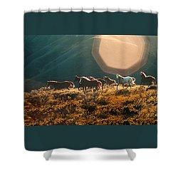 Magical Herd Shower Curtain