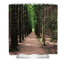 Magical Path Shower Curtain by Bruce Patrick Smith