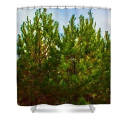 Magical Pines Shower Curtain