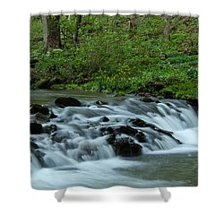 Magical River Shower Curtain by Julie Andel