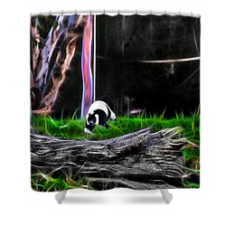 Walk In Magical Land Of The Black And White Ruffed Lemur Shower Curtain