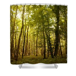 Magical Woodlands Shower Curtain