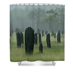 Magnetic Termite Mounds Shower Curtain by Bob Christopher
