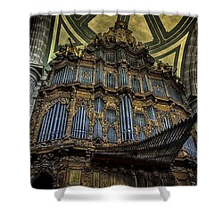 Magnificent Pipe Organ Shower Curtain by Lynn Palmer